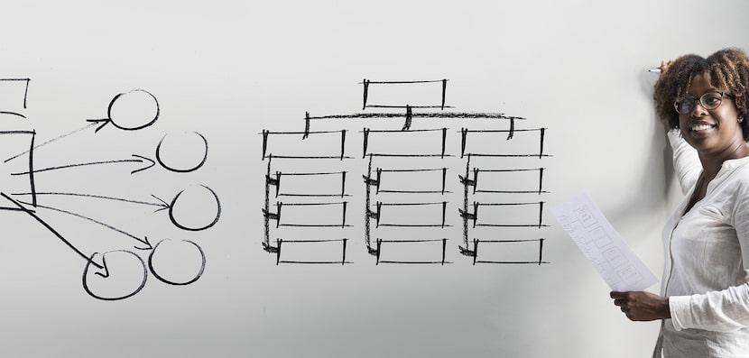 exemple organigramme
